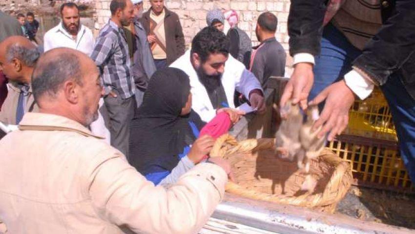 للقضاء على البطالة.. محافظة البحيرة توزيع 20 بطة كـ«قروض»
