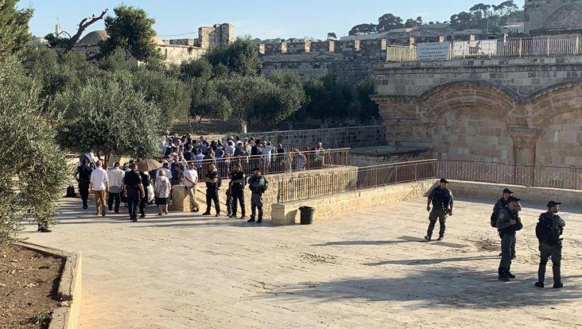 الأعياد اليهودية.. احتفالات إسرائيلية «تخنق» الفلسطينيين