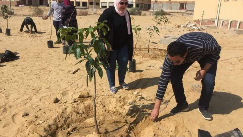«زراعة الليمون والريحان».. «شجرها» مبادرة للحفاظ على البيئة بأياد مصرية
