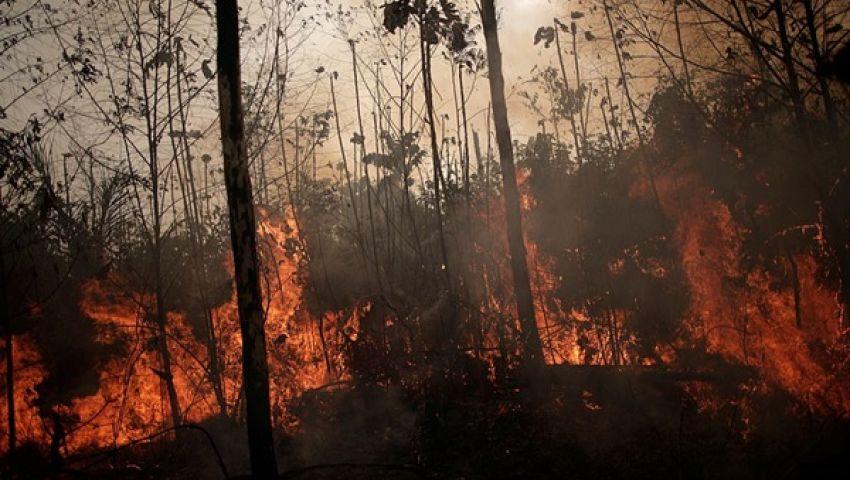 مجموعة السبع تستجيب لـ«نداء الغابة» وتقترب من الاتفاق لإنقاذ «رئة الأرض»