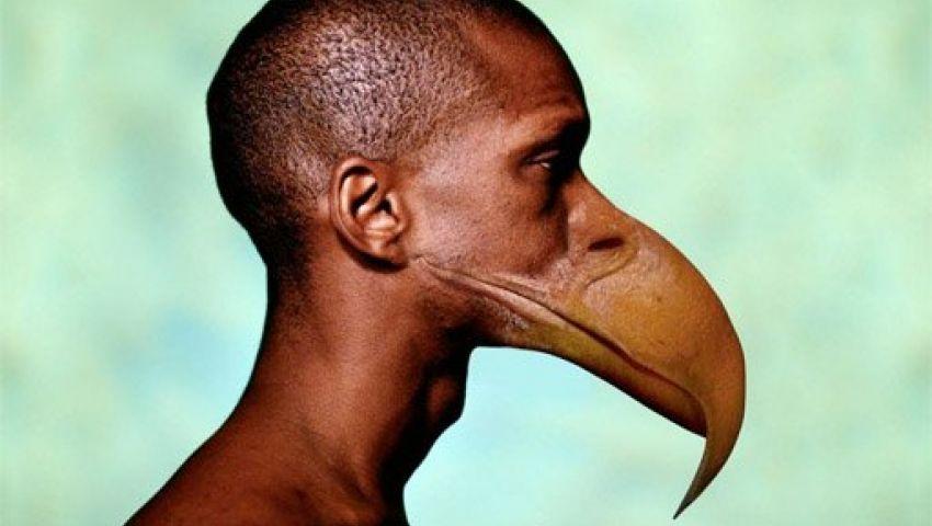 التطور سيؤدي لاستبدال الأسنان بمنقار