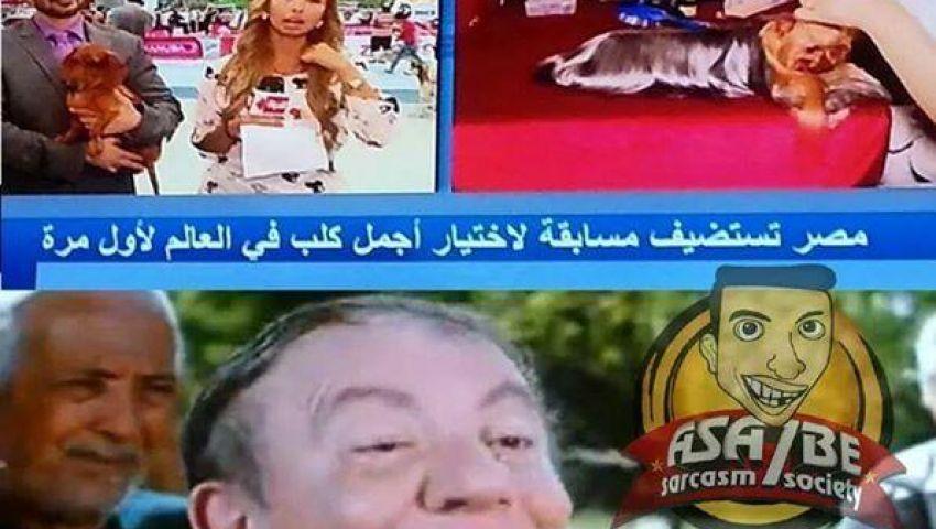 فيس بوك يسخر من تنظيم مصر لمسابقة أجمل كلب