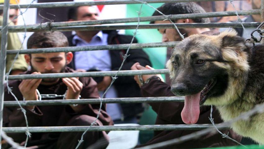أعياد اليهود تلغي زيارات أهالي أسرى غزة