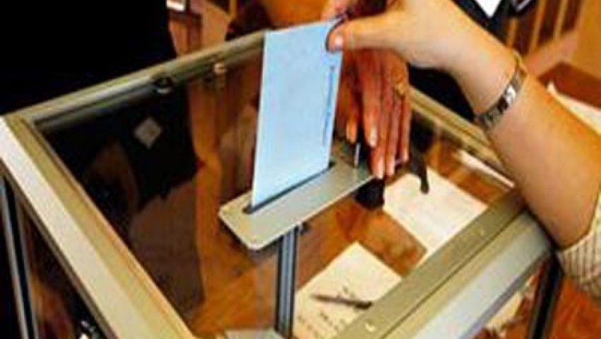 بدء التسجيل لناخبي الخارج استعدادا للاستفتاء على الدستور