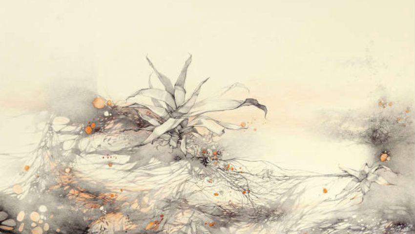 رسومات فاطمة عبد الرحمن تمزج بين الطبيعة والإنسان
