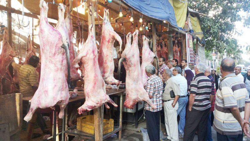 الزراعة: ذبح 211 رأس من عجول المنحة الإماراتية بسعر 55 جنيها للكيلو