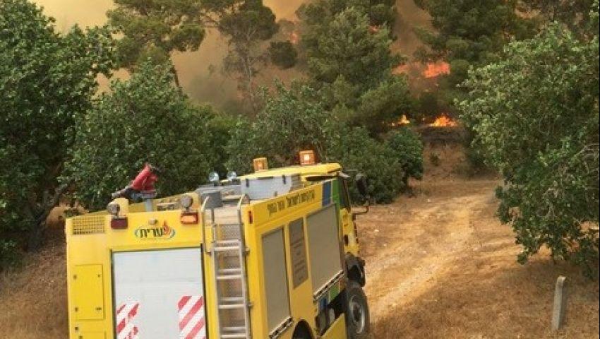 بالصور.. حريق كبير في غابات القدس