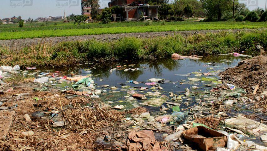 بالفيديو| الصرف الصحي يتلف المحاصيل الزراعية في أبيس العاشرة
