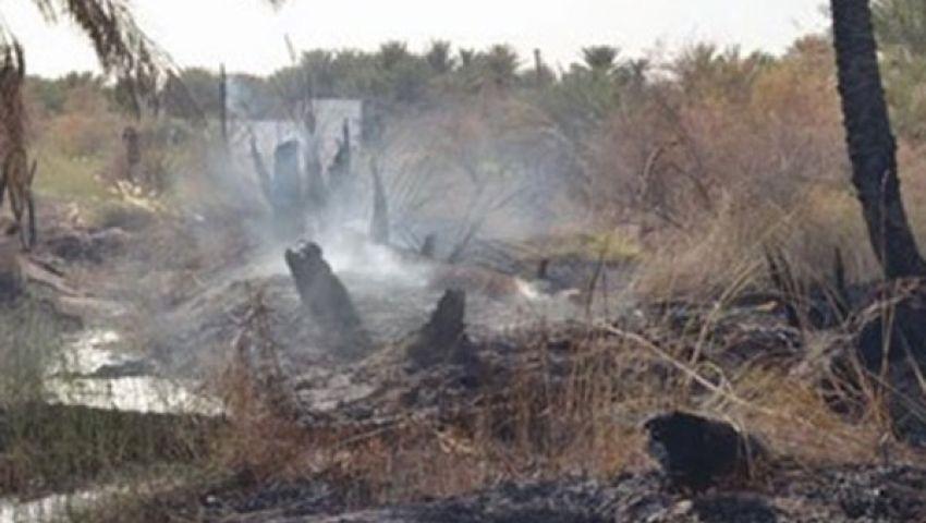 نفوق 3 رؤوس ماشية في حريق بالمنوفية
