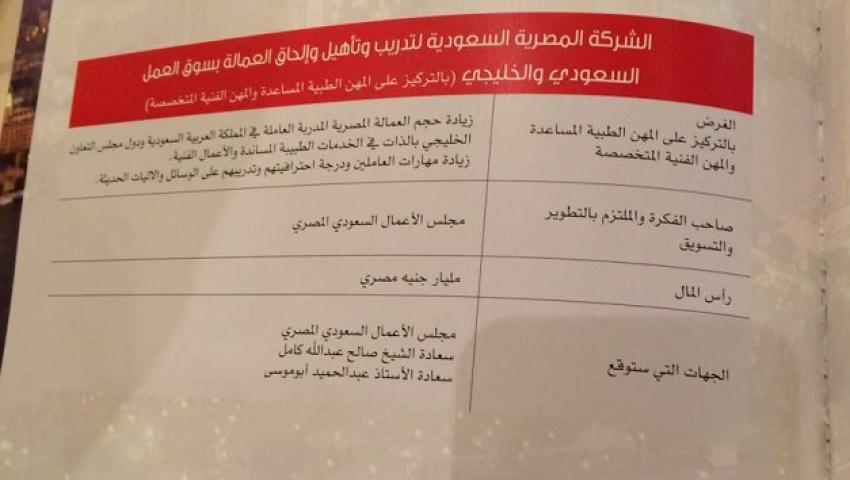 صور | التفاصيل الكاملة لاتفاقيات مجلس الأعمال المصري السعودي