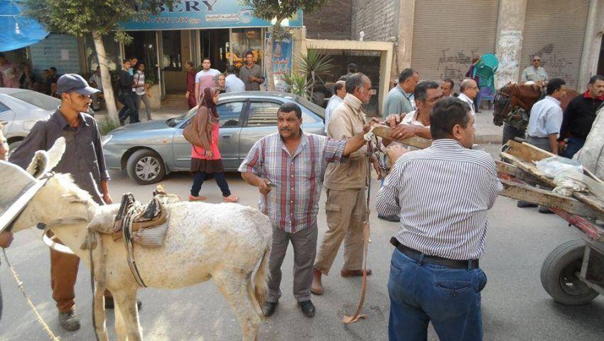 بالصور.. حملة أمنية ضد النباشين بالإسكندرية