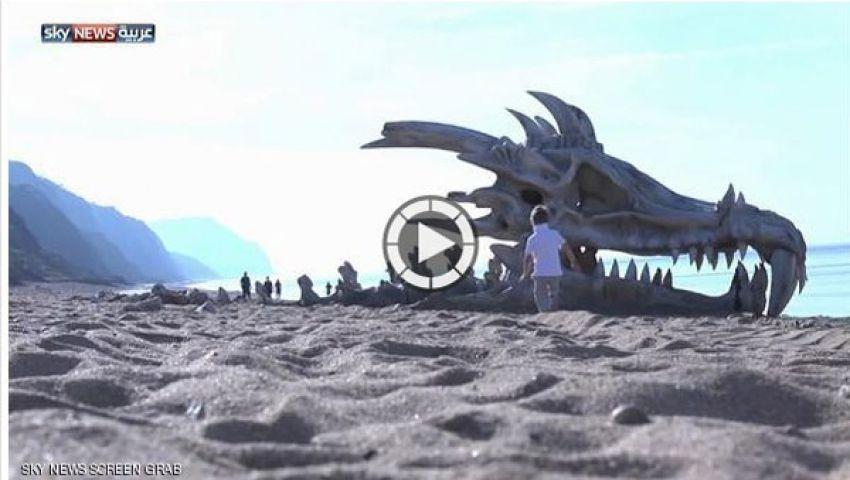 جمجمة تنين على شاطئ في بريطانيا