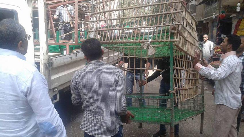 صور.. الجيزة تشن حملة لإزالة الإشغالات بـعمدة العمرانية