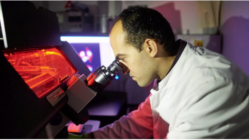 باحث مصري في ألمانيا يمنح الأمل لمرضى السرطان
