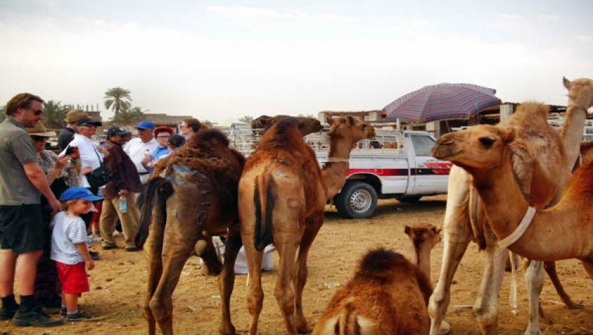 سوق الجمال بأسوان يتحول لمزار سياحي