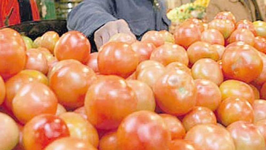 التعبئة والإحصاء: الطماطم أبرز السلع انخفاضا فى ديسمبر 2013