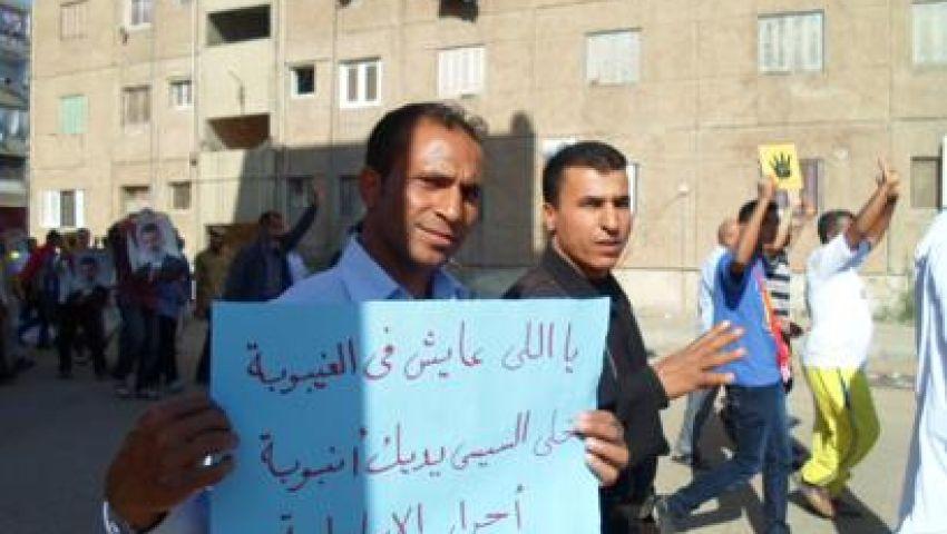 فيديو.. لافتات ساخرة من الانقلاب وأزمة البوتاجاز بمسيرة الإسماعيلية