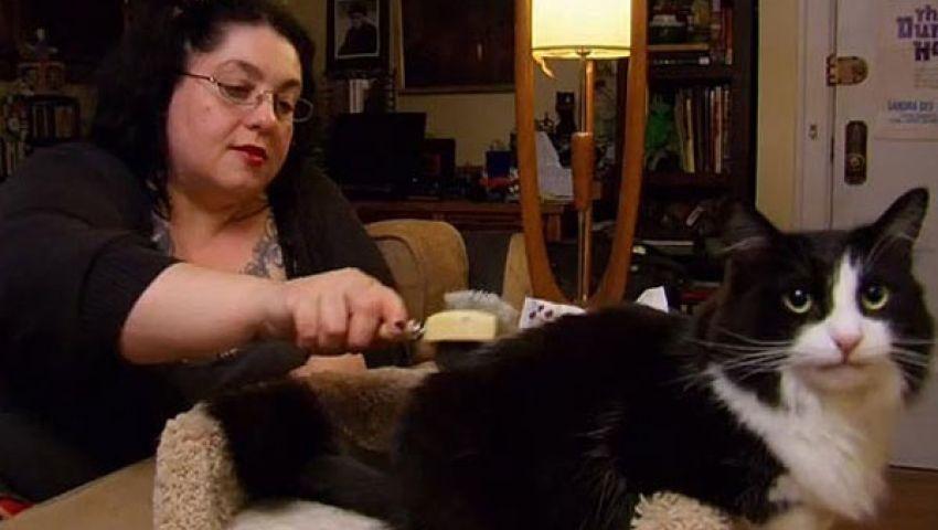 سيدة بريطانية مدمنة لأكل شعر القطط