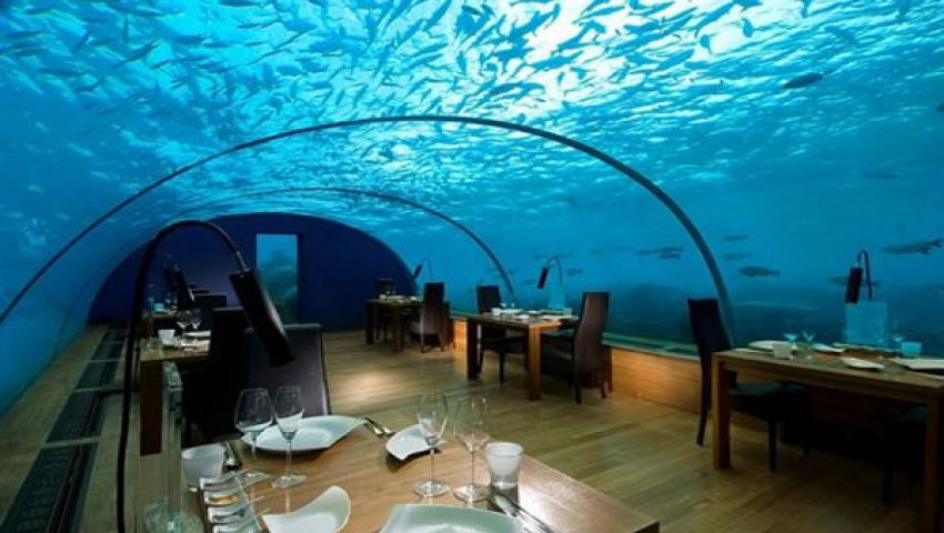 بالفيديو.. مطعم تحت سطح البحر تحوطه الأسماك