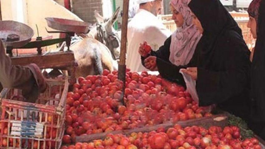 استقرار أسعار الطماطم والكوسة بـ سوق العبور