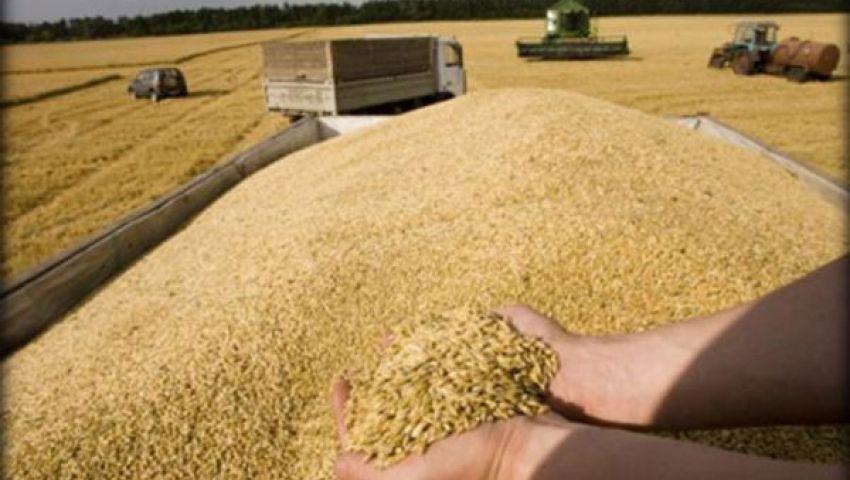 فرنسا: تلقينا طلبا مصريا بتخزين القمح واستيراده