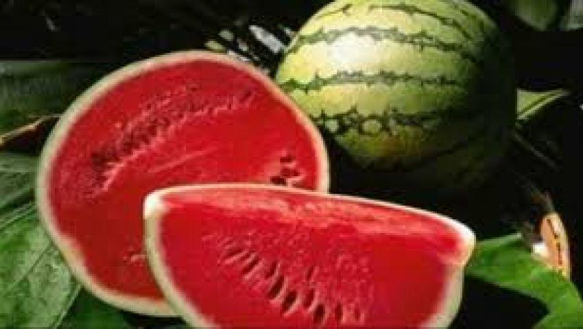 ما حقيقة البطيخ المسرطن؟.. نقيب الفلاحين: مجرد شائعات.. وخبير يكشف السبب