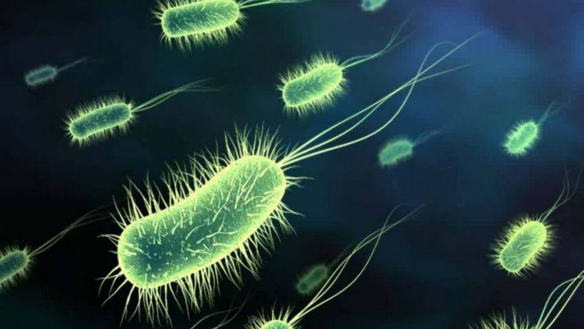 320 ألف فيروس جديد يهدد البشرية