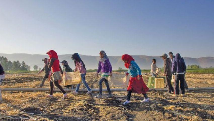 أطفال سوريون عمال في مزارع لبنانية