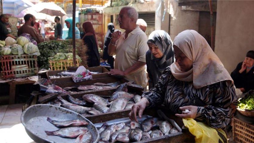 الغرف التجارية تقترح منع تصدير الأسماك لخفض  أسعارها