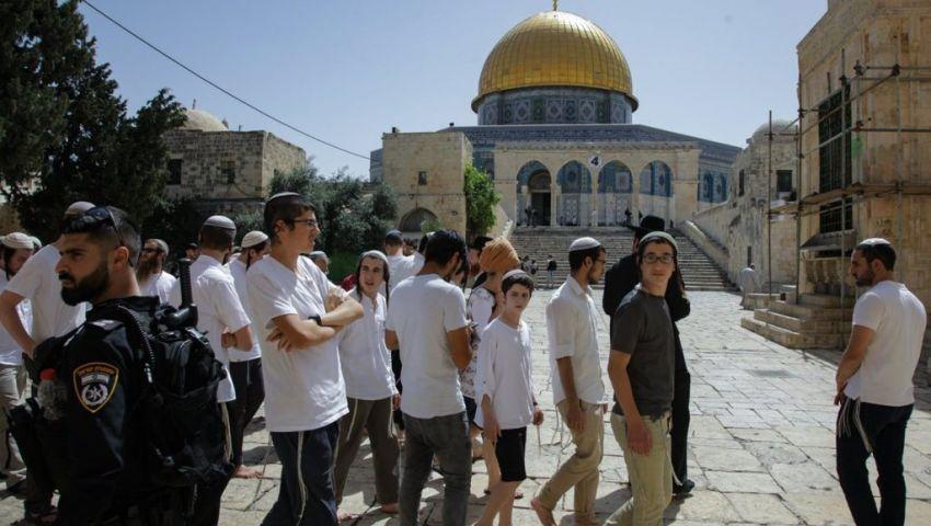 في القدس المحتلة.. 84 مستوطنًا يقتحمون باحات الأقصى