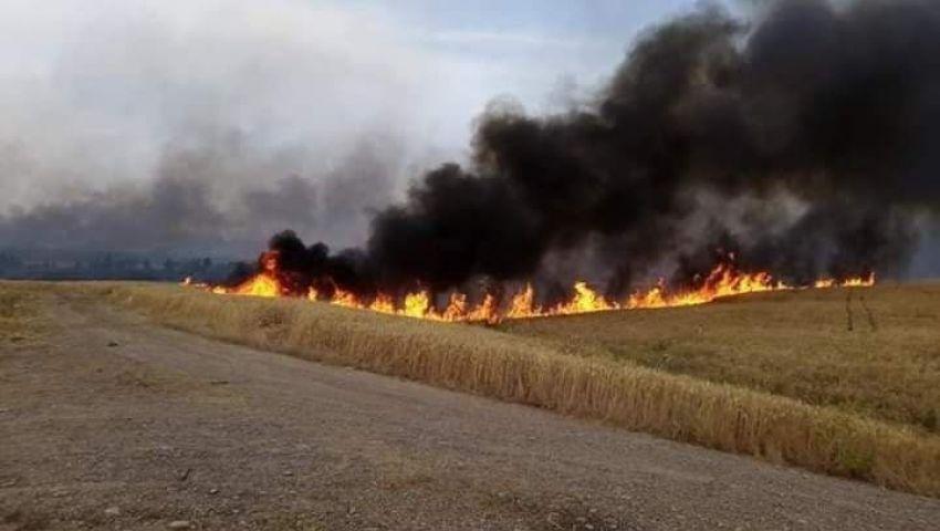 العراق..من أحرق قلوب مزارعي الموصل على محاصيلهم؟
