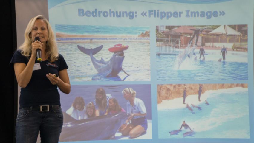 باحثة سويسرية في مصر لإنقاذ الدلافين من الانقراض