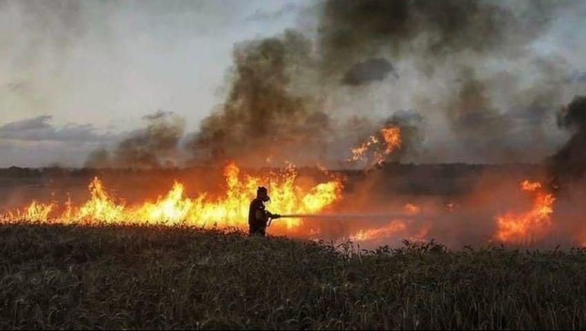 النيران تلتهم آلاف الدونمات الزراعية.. من يحرق حنطة العراقيين؟