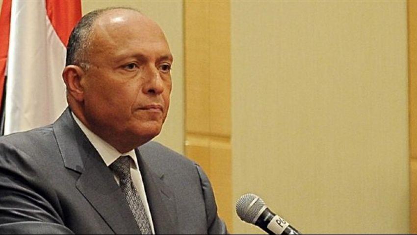 الخارجية توضح «تصريح شكري» حول عودة سوريا للجامعة العربية