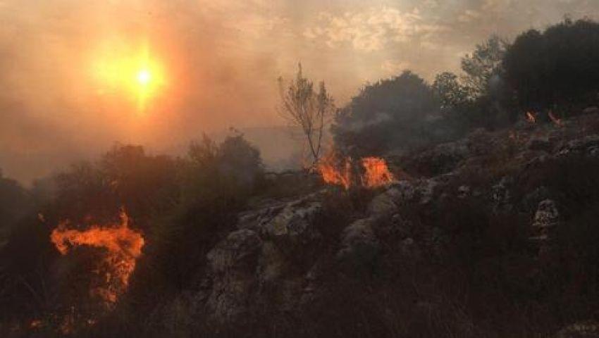 فيديو|حرائق ضخمة بـ «إسرائيل» ونتنياهو يدرس طلب مساعدات دولية