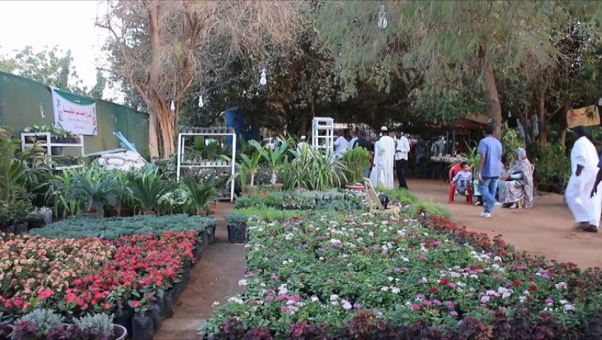 يستهدف مليون زائر..انطلاق معرض «زهور الربيع» اليوم بحديقة الأورمان
