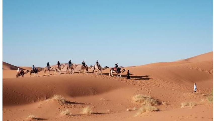 «مارلر تسايتونج»: مصر الواجهة السياحية الأكثر شعبية للسياح الألمان