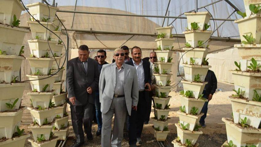 بالصور| محافظ الإسماعيلية يتفقد الصوب الزراعية بقرية الأمل