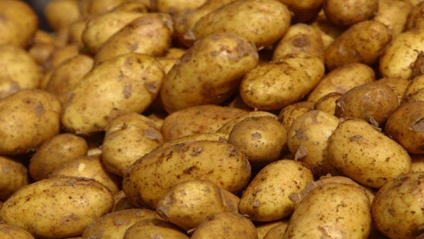 السني وفرة المعروض وراء انخفاض سعر البطاطس