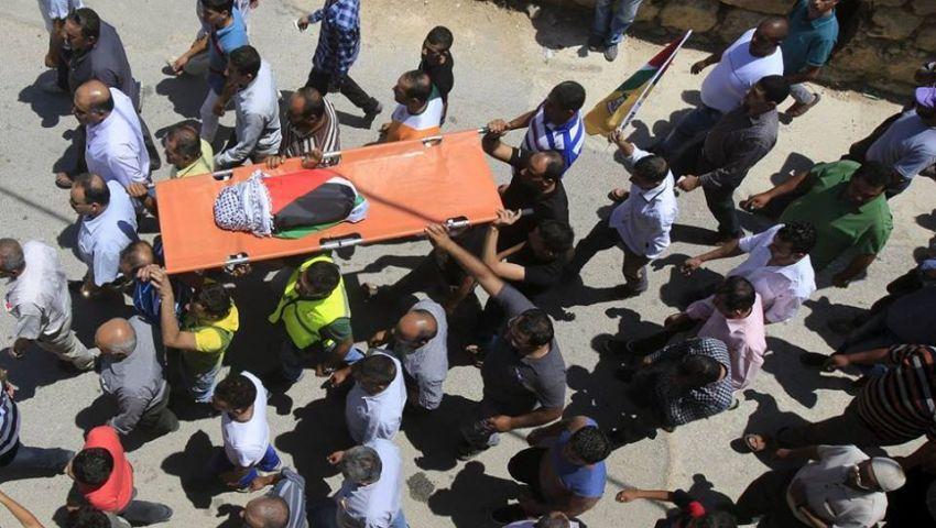 مشاهير مصر ينددون بحرق الطفل الفلسطيني ويطالبون بالرد