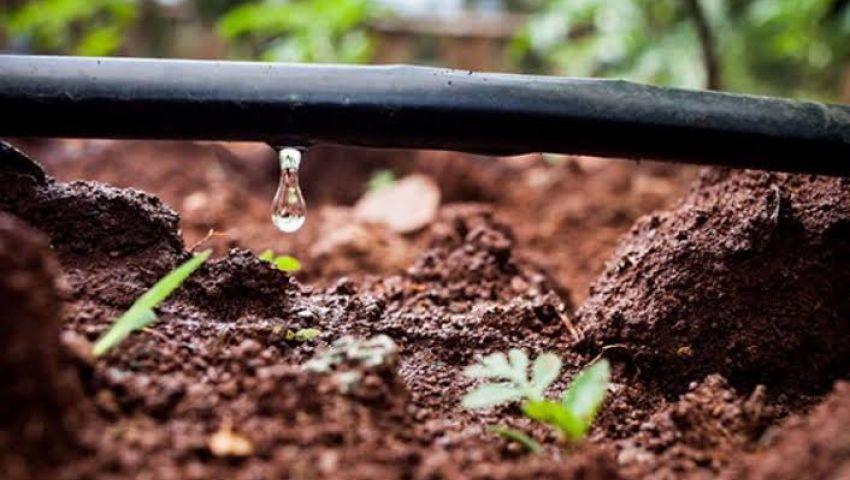 العجز المائي يصل 20 مليار م3 | نظم الري الحديثة.. قبلة الحياة للزراعة المصرية