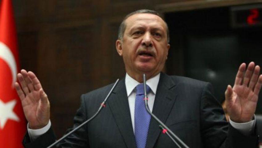 أردوغان رفض تلقى اتصال هاتفي من البرادعي