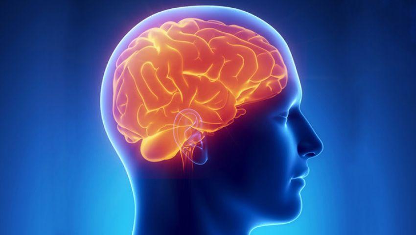 علماء: الفقر يؤثر في حجم الدماغ