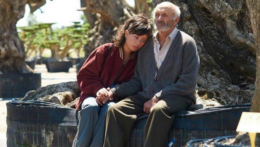 شجرة الزيتون.. فيلم إسباني يبحث عن الهوية