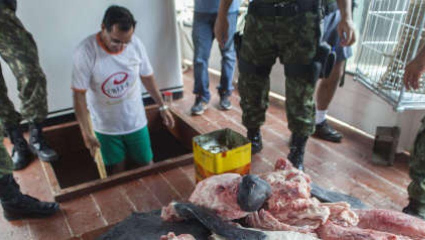 شركة برازيلية: مازلنا نصدر اللحوم للسعودية
