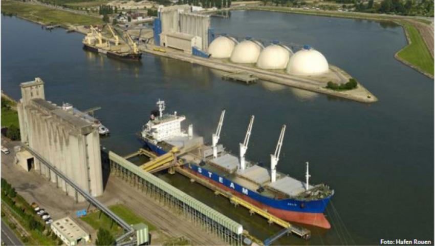 صحيفة ألمانية: فرنسا تشارك في مناقصة مصر للقمح بسفينة شحن