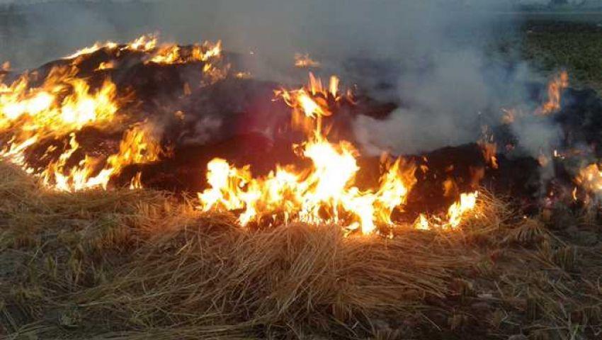 صور: بالأقمار الصناعية والإنذار المبكر.. البيئة ترصد حرائق قش الأرز