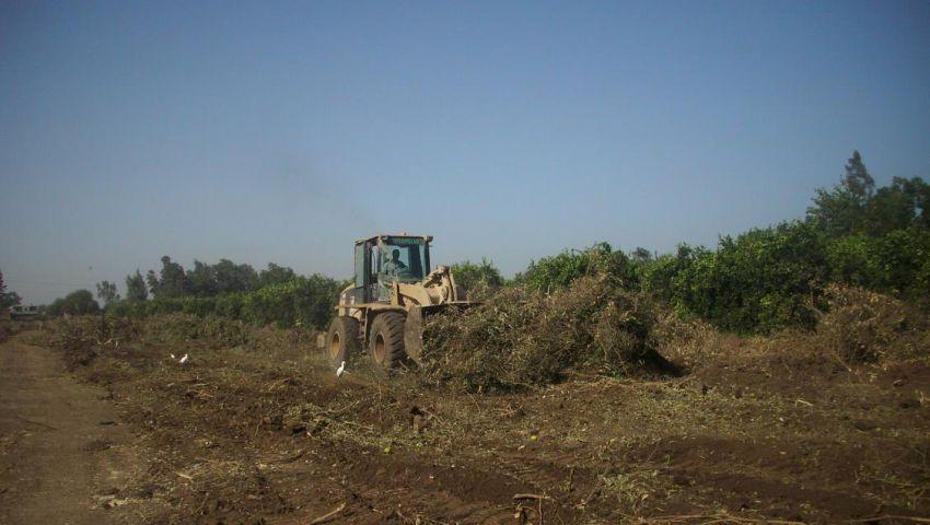 مزارعون بالمنوفية: رفع أسعار الأسمدة قرار طائش لحكومة غائبة