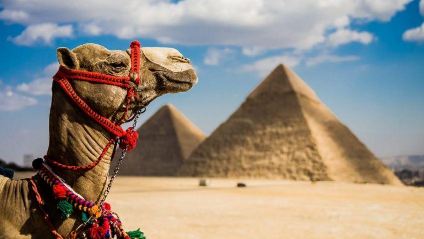 توقعات بزيادة عدد السائحين في مصر إلى 9.1 مليون عام 2022