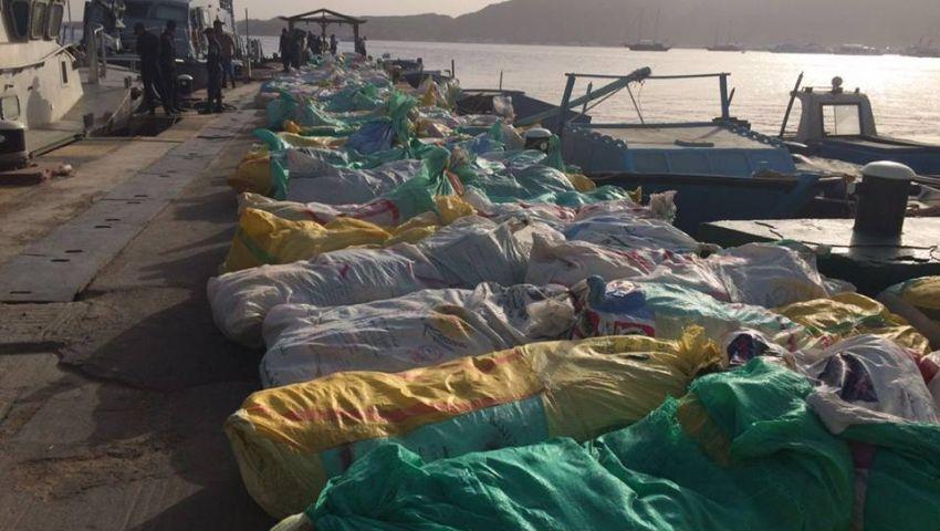 القوات المسلحة: ضبط كميات كبيرة من المواد المخدرة والأسلحة شمال سيناء